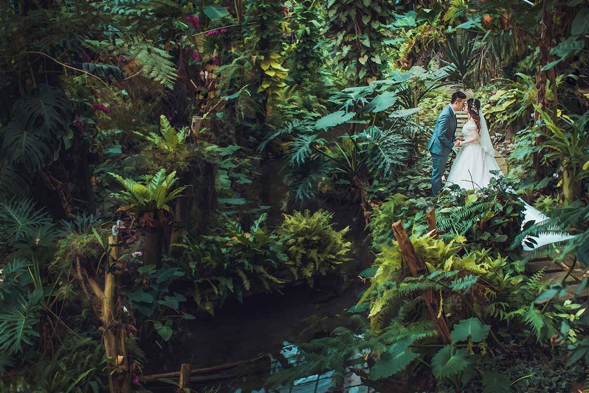 《南投婚攝》早儀式午宴客 / 台一生態休閒農場戶外婚禮草地證婚